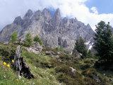 Sassolungo Range  3181M  Val Gardena  Dolomites  Alto Adige  Italy