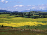 Wide Open Rolling Landscape  High Country  Australia