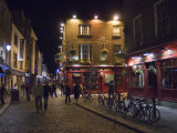 The Temple Bar Pub  Temple Bar  Dublin  County Dublin  Republic of Ireland (Eire)