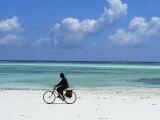 A Man Riding His Bicycle of Kiwengwa Beach  Island of Zanzibar  Tanzania  East Africa  Africa