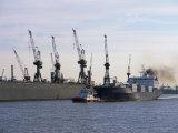 Cranes  Port of Hamburg  Hamburg  Germany