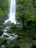 Erskine Falls  Waterfall in the Rainforest  Great Ocean Road  South Australia  Australia