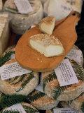 Cheese in the Market  Ajaccio  Corsica  France
