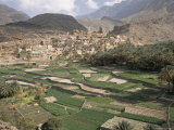 Traditional Jabali Village with Palmery in Basin in Jabal Akhdar  Bilad Sayt  Oman  Middle East