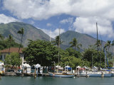Sailing Boats in the Harbour of Lahaina  an Old Whaling Station  West Coast  Hawaii