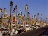 Fishing Fleet  Den Helder  Holland