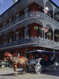 Horse and Carriage in the French Quarter  New Orleans  Louisiana  USA