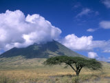 The Masai's Holy Mountain  Tanzania  East Africa  Africa