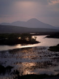 Caillich and the Cuillin Hills in the Background  Isle of Skye  Highland Region  Scotland