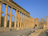 Ruins of the Colonnade  Palmyra  Unesco World Heritage Site  Syria  Middle East