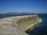 Cobb Quay (The Cobb)  Lyme Regis  Dorset  England  United Kingdom