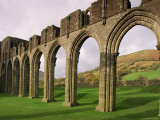 Ruins of Llanthony Priory  Vale of Ewyas  Black Mountains  Gwent  Wales  United Kingdom