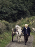 Donkey Cart  County Leitrim  Connacht  Republic of Ireland (Eire)