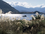 Lake Wanaka  Otago  South Island  New Zealand
