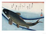 Carp', from the Series 'Collection of Fish' Giclée par Ando Hiroshige