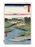 Nekozane at Horikiri'  from the Series 'One Hundred Views of Famous Places in Edo'