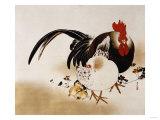 Cockerel  Hen and Chicks  1892