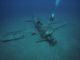 A Diver Explores the Wreckage of a Japanese World War Ii Plane