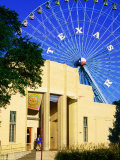 Dallas Museum of Natural History at Fair Park  Dallas  Texas