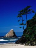 Rocky Outcrop at Heceta Head State Beach  Near Florence  Florence  Oregon