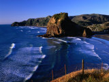 Coastline at Piha Dominated by Lion Rock  New Zealand