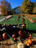 Pumpkin Patch Store  Pownal  Vermont