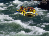 White-Water Rafting in Snake River  Jackson Hole  Jackson  Wyoming