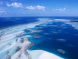 Coral Reef  Torres Strait Islands  Torres Strait Islands  Queensland  Australia