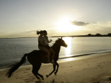 Two Girls Horseriding along Beach at Yarra Bay  Botany Bay  Sydney  New South Wales  Australia