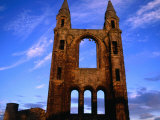 Ruins of St Andrews Cathedral  St Andrews  Fife  Scotland  United Kingdom