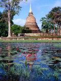 The Lotus Pond and Stupa in Sukhothai Historical Park, Thailand Papier Photo par Glenn Beanland