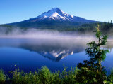 Trilium Lake with Mt Hood in Background  Mt Hood  Oregon