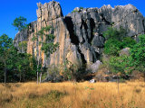 Limestone Towers on Walking Trail from Donna Cave to Royal Arch Cave  Queensland  Australia