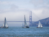 Sailing Boats with the Golden Gate Bridge and Summer Fog in Background  San Francisco  California