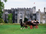 Horse Carriage with Birr Castle Demesne  Ireland