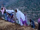 Women Repairing Road on Hillside  Eritrea