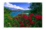 Colorful Caribbean View  St John  Virgin Islands
