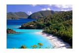 Trunk Bay Beach  St John  US Virgin Islands