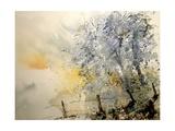 Watercolor 240505