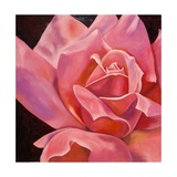 Rose rose Giclée premium par Hyunah Kim