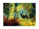 A Stag in the Wood