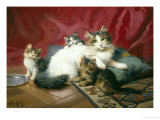 Cosy Family