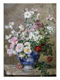 Still Life of Anemones and Roses in a Blue and White Vase