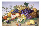 Still Life of Grapes  Pineapple  Figs and Pomegranates