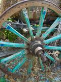 Wagon Wheels in Colorful Blues  Turkey