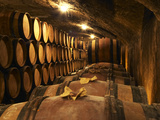 Wooden Barrels with Aging Wine in Cellar  Domaine E Guigal  Ampuis  Cote Rotie  Rhone  France