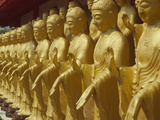 Standing Gold-Colored Buddha Statues at a Buddhist Shrine  Foukuangshan Temple  Taiwan