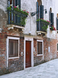 Residential Side Street Decorated with Flowers  Venice  Italy