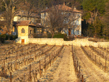 Winery Building at Chateau Saint Cosme  Gigondas  Vaucluse  Rhone  Provence  France