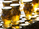 Local Honey  Anafonitria  Zakynthos  Ionian Islands  Greece